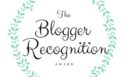 Wow, I've received the Blogger Recognition Award Nomination!